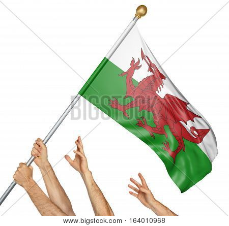 Team of peoples hands raising the Wales national flag, 3D rendering isolated on white background