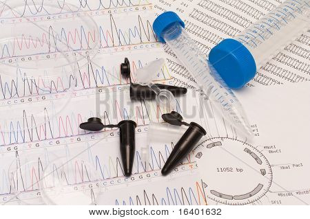 DNA sequence, restriction map,