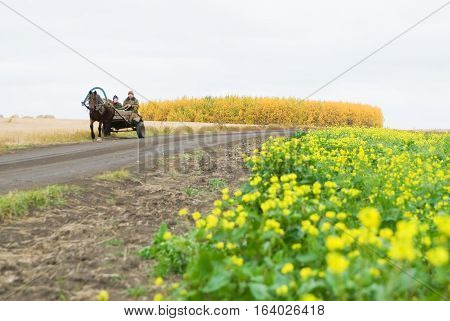 Romanovo, Russia - September 30, 2007: People in the old wooden cart move on unpaved road among fields