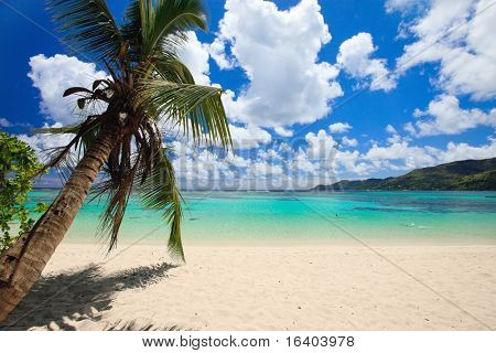 Stunning tropical beach on Mahe island in Seychelles