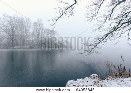 Frozen Pond With Few Trees In Foggy Winter Morning