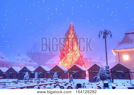 Christmas tree outdoor in Brasov town city of Transylvania, in winter time, Romania