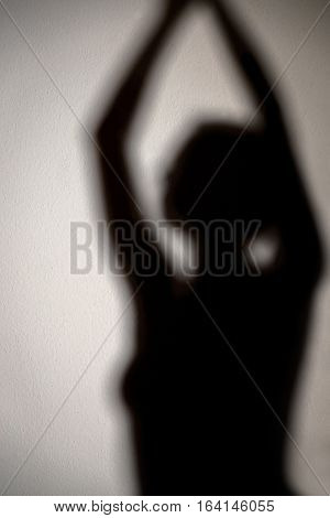 Silhouette, Woman With Submissive Behavior, Fetish, Sm And Bondage
