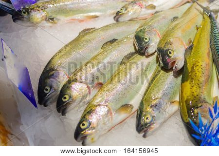 Fish On Sale In A French Market