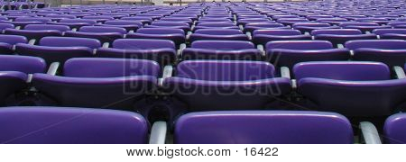 Close Up Of  Purple Seats