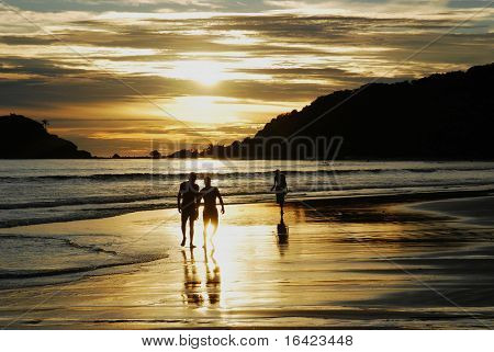 Friends walking at sunset on the beach