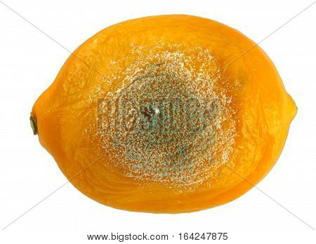 Rotten lemon isolated on a white background