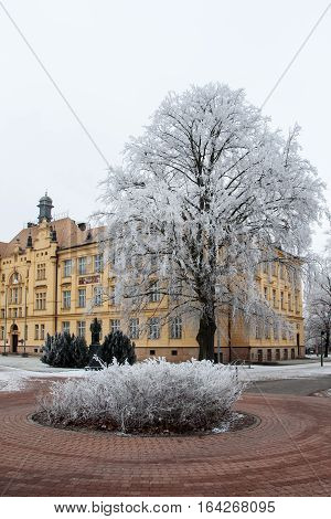 High school building in Litovel amongst hoar frosted trees in cold winter day, Czech Republic