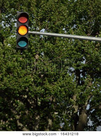 Traffic lights - orange light is on (against lovely tree greenery)