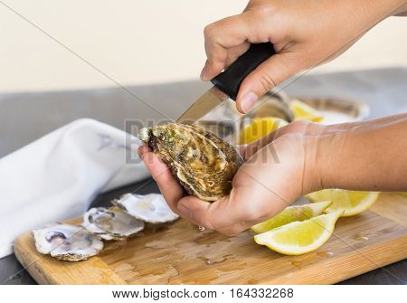 Someone hands opening fresh raw oysters shells