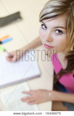 Portrait of a pretty young college student in a classroom (color toned image)