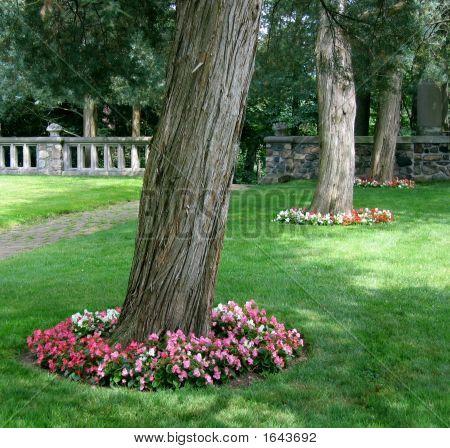 Flower-Ringed Trees
