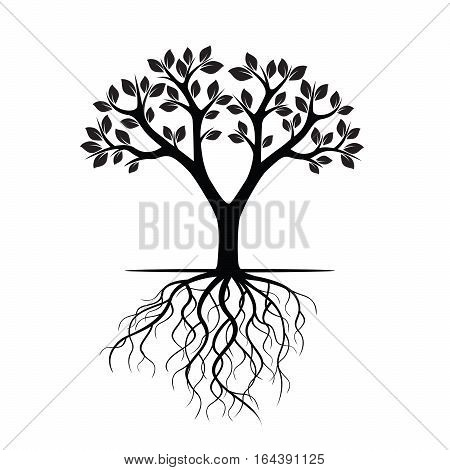 Black Tree and Roots. Vector Illustration and graphic element