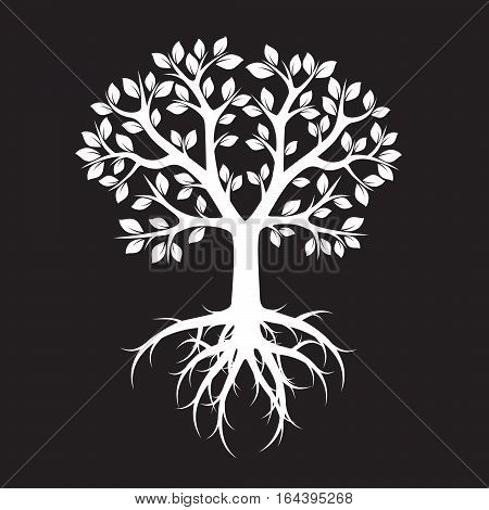 White Tree and Roots. Vector Illustration and graphic element.