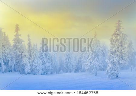 Winter scene in Poiana Brasov, beautiful landscape from Transylvania,  Romania