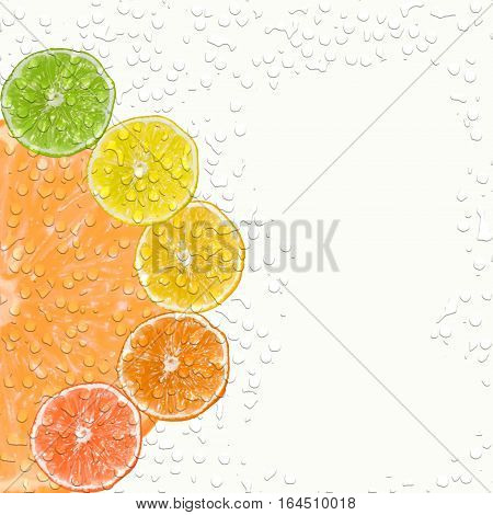 Slices of different citrus fruits cover with water drops
