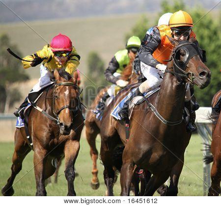 MELBOURNE - 21 de fevereiro: Cavalos entram o reto na placa De Bortoli, vencido por sobre o Scoot em Y