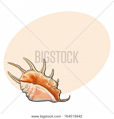 Colorful spiral conch sea shell, sketch style vector illustration isolated on background with place for text. Realistic hand drawing of saltwater conch, sea snail shell