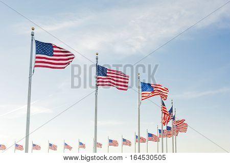 US flags surrounding the Washington Monument in Washington D.C.