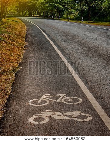 bike lane in park near city for leisure activity