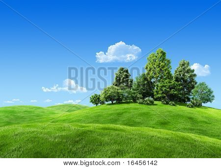 Very detailed 7000px trees on hill - nature collection