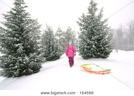 Girl With Sled