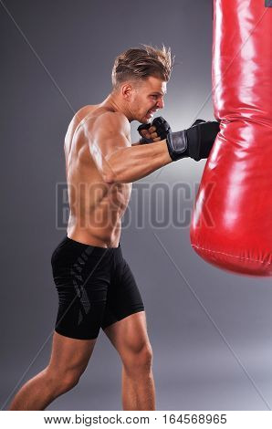 Muscular Fighter Practicing Some Kicks With Punching Bag. Boxing On Gray Background. The Concept Of