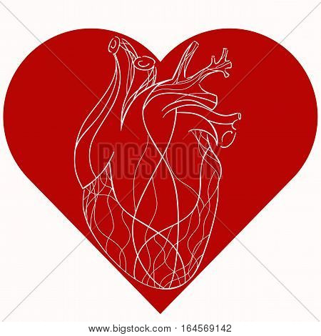 Vector illustration of realistic stylized heart in red heart. Vector element for your creativity