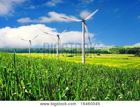 Wind turbines farm in summer