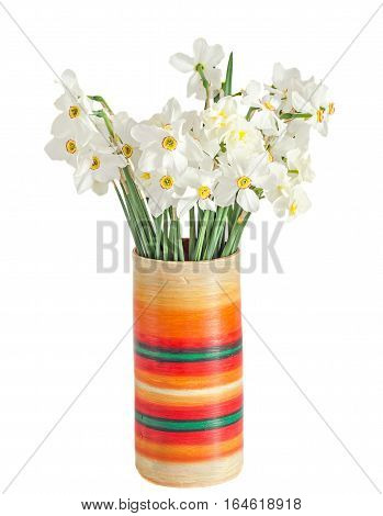 White Daffodils Flowers, Narcissus, Multi Colored Vase, Flowerpot, Close Up, White Background.