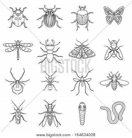 Insects set icons in outline design. Big collection of insects vector symbol stock illustration