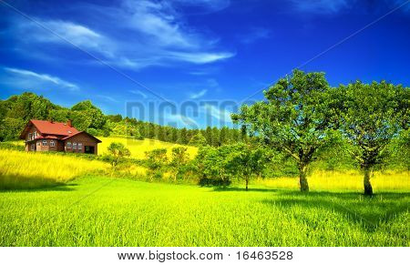 Mountain house in summer