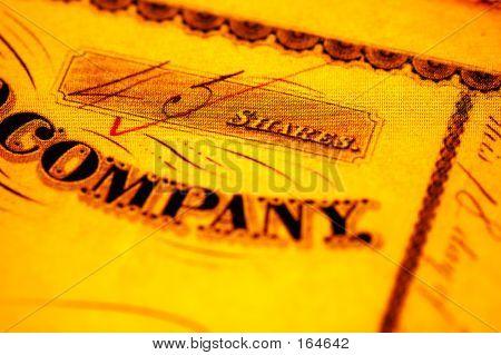 Company Share