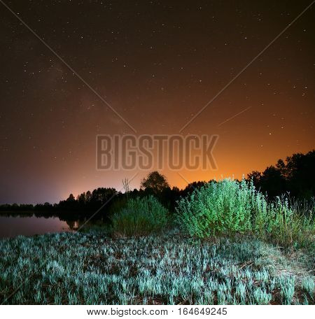 night over the lake the stars in the night sky a falling star trees and grass illuminated by a flashlight