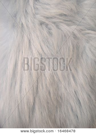blue fur for background