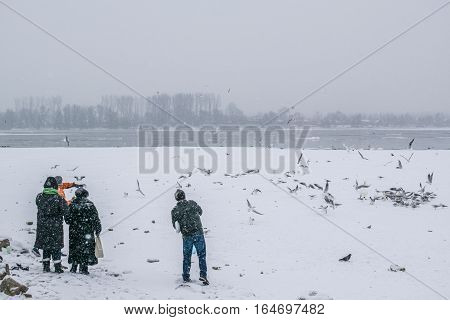 People Feeding Birds On The Frozen Danube River With Captured Boats