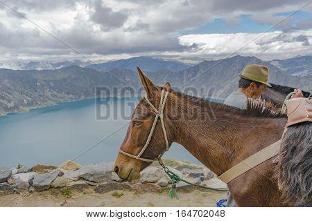 QUILOTOA, ECUADOR, FEBRAURY - 2016 - Indian with his horse and Quilotoa lagoon at background Ecuador