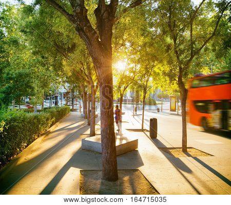 Street Of Madrid In Rays Of Evening Sun. Spain