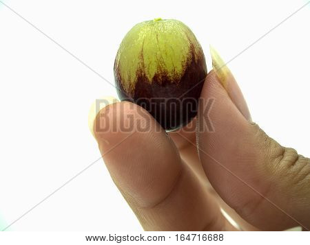 Woman's hand holding red grape on isolate white background