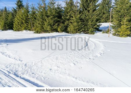 Snowmobile track marks on the snow in the forest