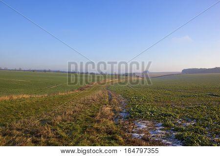 Rural Bridleway In Winter