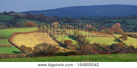 Farmland. Pastures on the hills. Dartmoor National Park. Autumn. Evening. Devon. UK