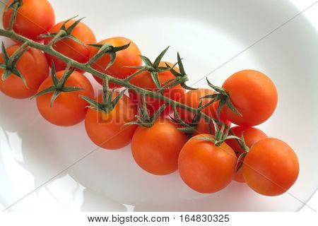 Branch with many red fresh tomatoes on plate isolated on white closeup