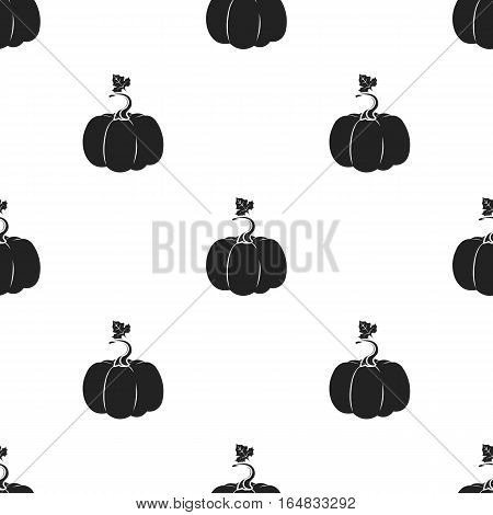 Pumpkin icon in black style isolated on white background. Plant pattern vector illustration.