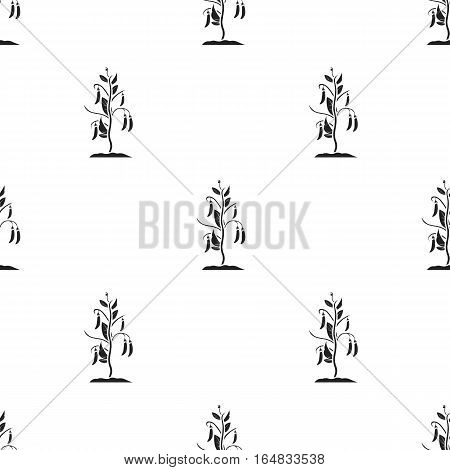 Peas icon in black style isolated on white background. Plant pattern vector illustration.