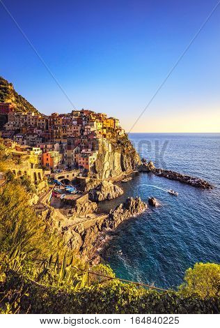 Manarola village on cliff rocks and sea at sunset. Seascape in Five lands Cinque Terre National Park Liguria Italy Europe.