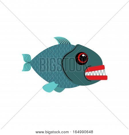 Piranha Isolated. See Predatory Fish On White Background