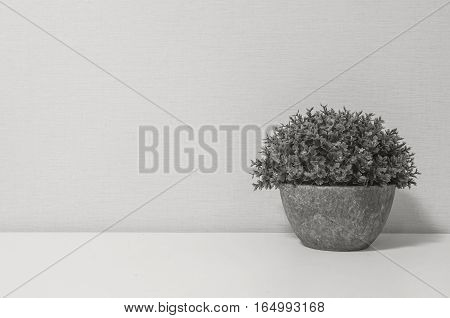Closeup artificial purple plant on pot for decorate on blurred wooden white desk and wall textured background in room in black and white tone with copy space