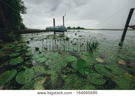 Boat Village. Water lilies and lily on the water
