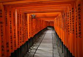 stock photo of inari  - Fushimi Inari Shrine  - JPG